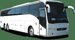 Mini Bus - Mini Bus